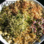 GAIA sprouter Salad ideas 6